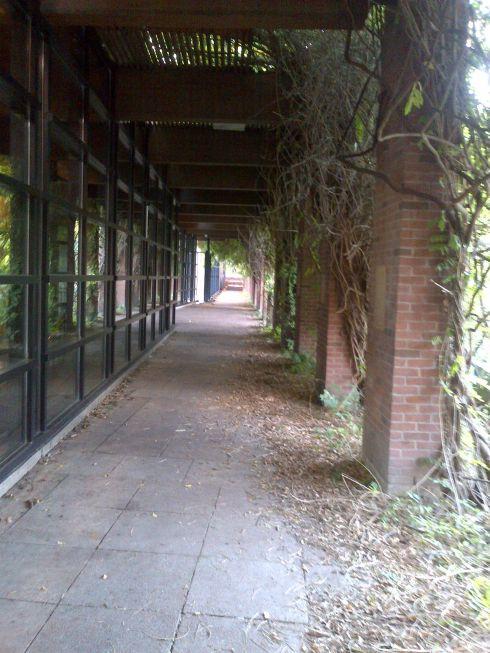 Longhouse 1_Eglinton Park