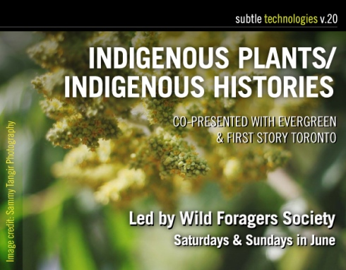 Indigneous-Plants_web-banner